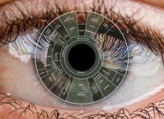 Cosa è l'iridologia