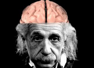 cervello di einstein corpo calloso-min