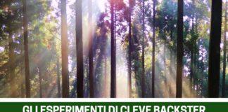 le piante sono esseri viventi e come tali parlano e provano dolore secondo gli esperimenti di Cleve Backster
