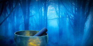 suono della pioggia nel bosco e campane tibetane