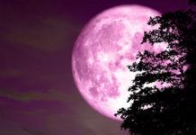 luna rosa 19 aprile 2019