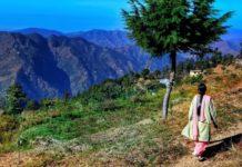 sikhs un millione di alberi entro novembre