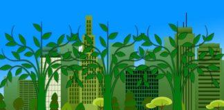 Inquinamento domestico: ecco cosa devi sapere