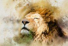 Come Migliorare la Tua Leadership Conquistando i Pensieri Negativi