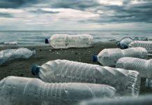 3 Motivi per NON Bere Mai più Acqua in Bottiglia
