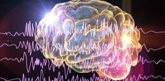 Le Onde Cerebrali Delta Theta e Alfa per il Miglioramento Personale